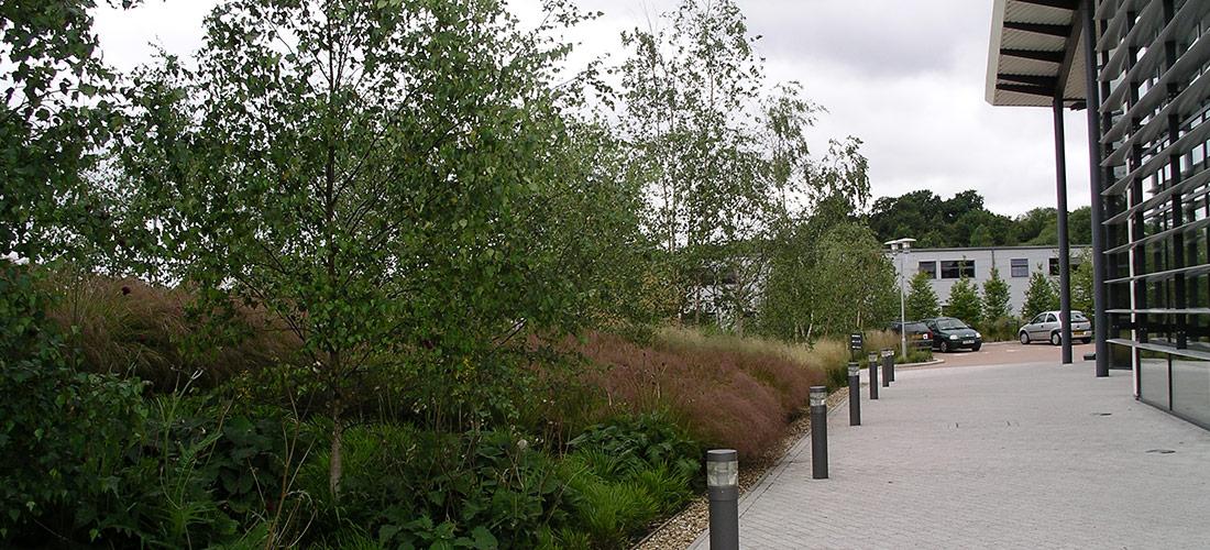 Coxbridge Park